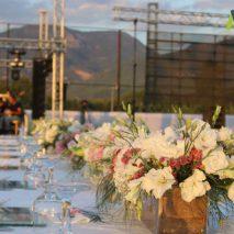 Gozde-Oguzhan-Wedding-3